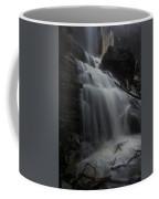 Billy Green Falls Coffee Mug
