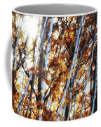 Birch And Oak And Sun Coffee Mug