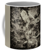 Birch Bark Detail Monotone Img_6361 Coffee Mug