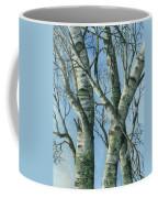 Birch Eye View Coffee Mug
