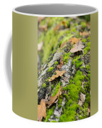 Birch Log Coffee Mug