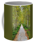 Birch Pathway Perspective Coffee Mug