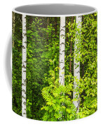 Birch Tree Panorama Coffee Mug