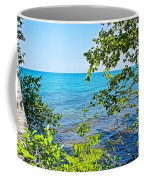 Birch Trees Above Lake Superior Off North Country Trail In Pictured Rocks National Lakeshore-mi Coffee Mug