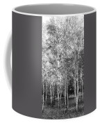 Birch Trees1 Coffee Mug