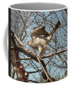 Birched Cooper 1 Coffee Mug