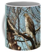 Birched Cooper 2 Coffee Mug