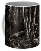 Birches In The Wood Coffee Mug