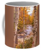 Birches On The Kancamagus Highway Coffee Mug