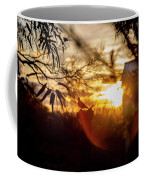 Bird At Sunset Color Coffee Mug