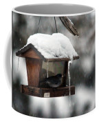 Bird House Blues Coffee Mug