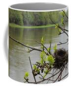 Bird Nest In Ash Tree Branches Coffee Mug