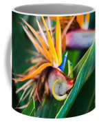 Bird Of Paradise Gecko Coffee Mug