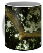 Bird Of Prey Coffee Mug