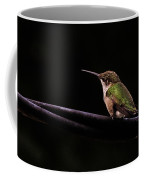 Bird On A Wire Coffee Mug