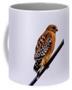 Bird On A Wire With Attitude Coffee Mug
