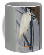 Bird On Boat Coffee Mug