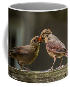 Bird Parenting Coffee Mug