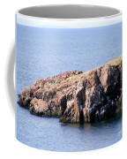 Bird Rock Coffee Mug