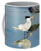 Bird - Tern - Reflection Coffee Mug