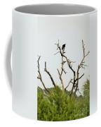 Bird011 Coffee Mug