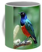 Birds 108 Coffee Mug