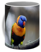 Birds 27 Coffee Mug