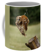 Birds 47 Coffee Mug