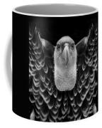 Birds 50 Coffee Mug