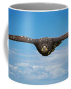 Birds 64 Coffee Mug