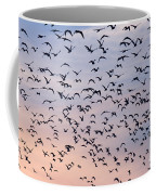 Birds A Flock Of Seagulls Coffee Mug