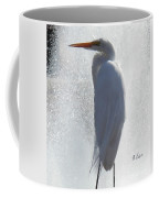 Birds And Fun At Butler Park Austin - Birds 2 Macro Coffee Mug by Felipe Adan Lerma
