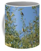 Birds At Peters Canyon Coffee Mug