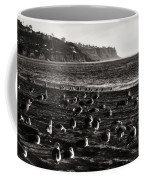 Birds Of A Feather... Coffee Mug