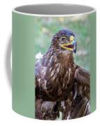 Birds Of Prey Series 3 Coffee Mug