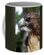 Birds Of Prey Series Coffee Mug