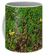 Birdsfoot Trefoil Surrounded By Tiny Bright Eyes In Campground In Saginaw-minnesota Coffee Mug