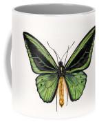 Birdwing Butterfly Coffee Mug