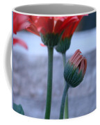 Birth Of A Flower Coffee Mug