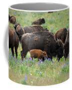 Bison And Lupine Coffee Mug