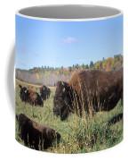 Bison Home On The Range Coffee Mug
