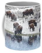 Bison Snow Reflecton Coffee Mug
