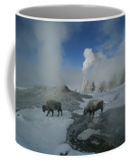 Bison Walking In Front Of Lion Geyser Coffee Mug
