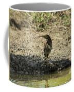 Bittern  Coffee Mug