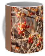 Bittersweet - T Coffee Mug