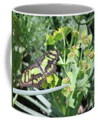 Black And Green Butterfly Coffee Mug