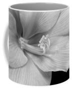 Black And White Amaryllis Bloom Coffee Mug