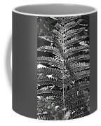 Black And White Fern Coffee Mug