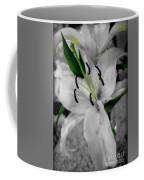 Black And White Life Coffee Mug
