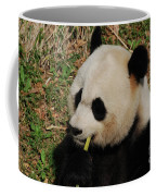 Black And White Panda Bear Eating Green Bamboo Shoots Coffee Mug